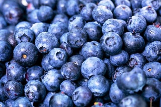 abundance-antioxidant-berries