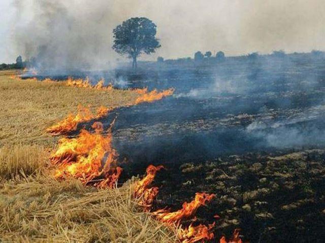 burning of crop residues