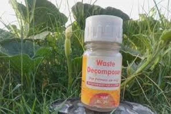 वेस्ट डीकम्पोजर : जैविक खेती के लिए ...