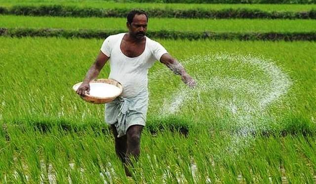 agro news news agricuture
