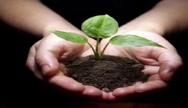 increase soil fertiliy