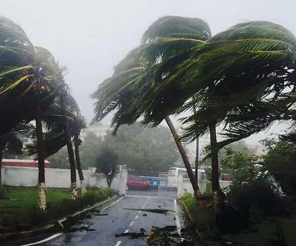 bulbul cyclone