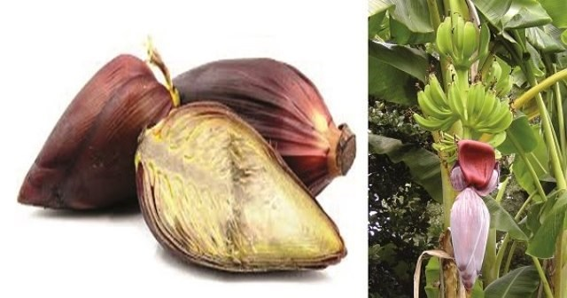 banana flower side effects during pregnancy