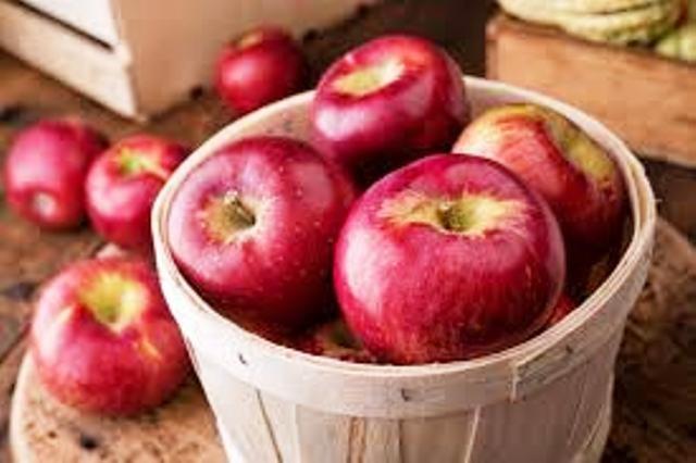 profit from apple uttrakhand apple