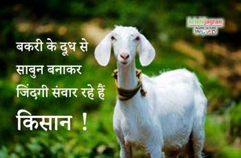 उस्मानाबाद के किसान बकरी के दूध से साबुन बनाकर कमा रहे बंपर मुनाफा !