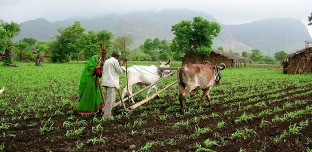 Organic farming method