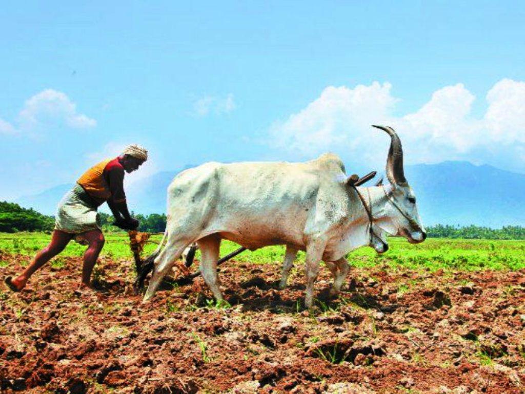 pension scheme for farmers