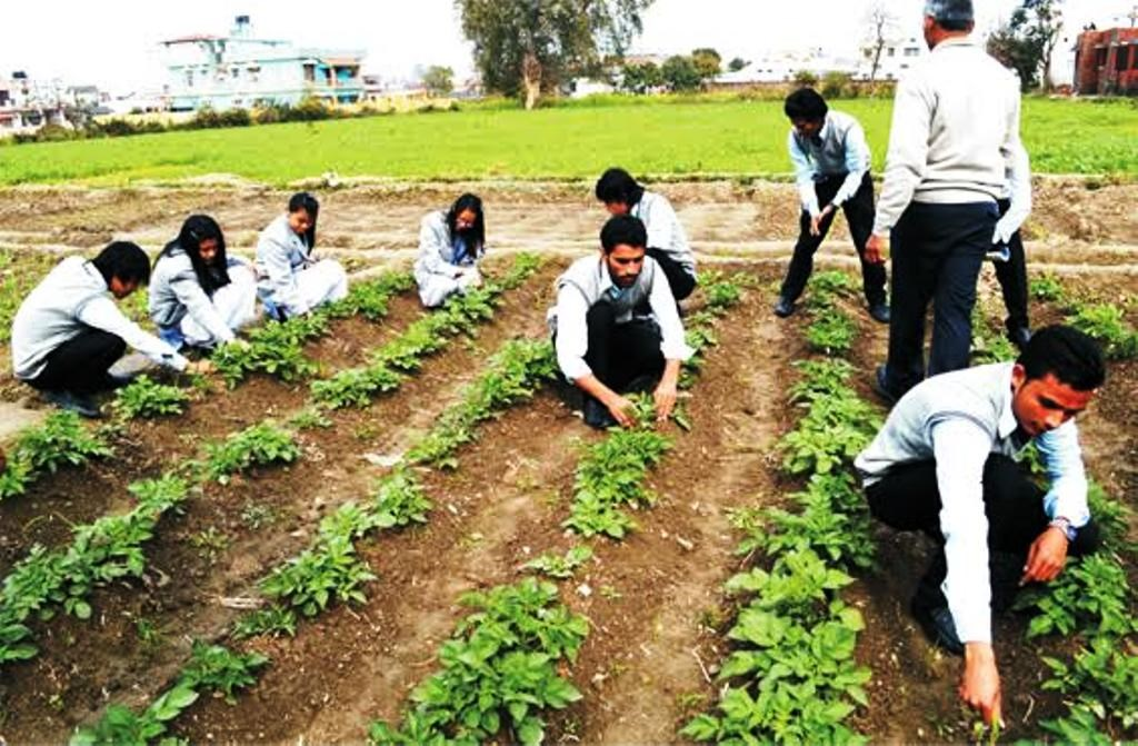 agriculture education day 2019