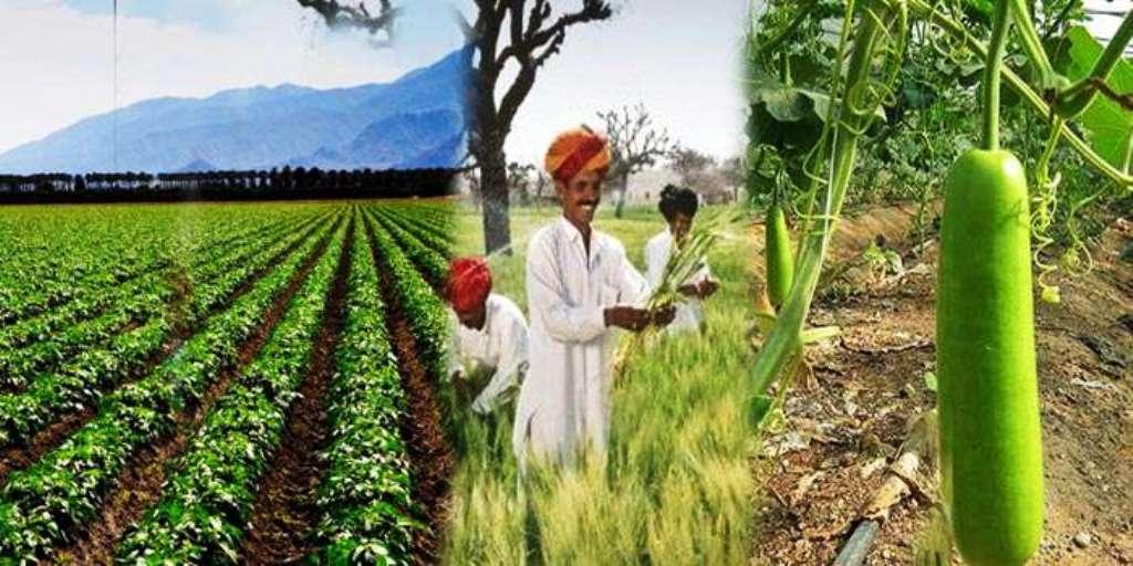 Prime Minister Crop Insurance Scheme