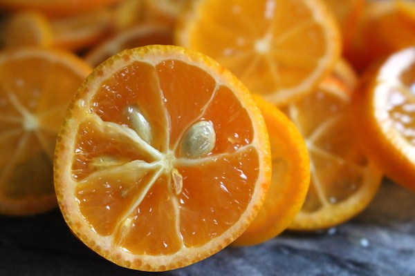 orangeseed