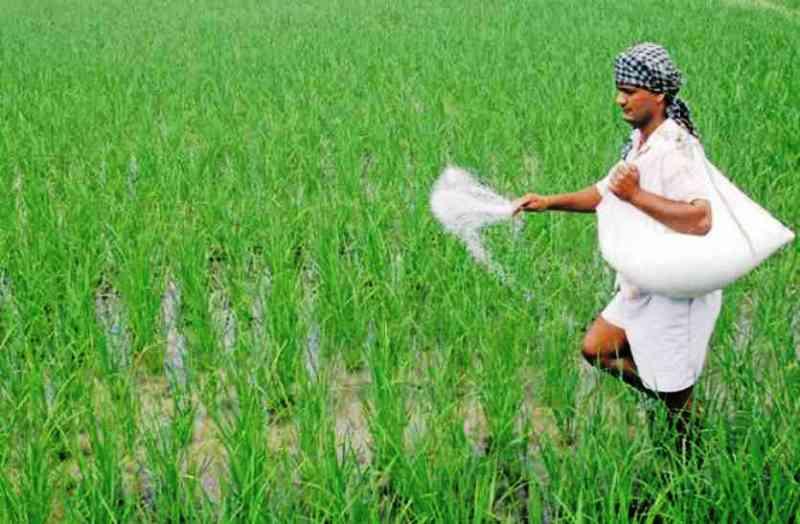 seeds-fertilizers-and-pesticides
