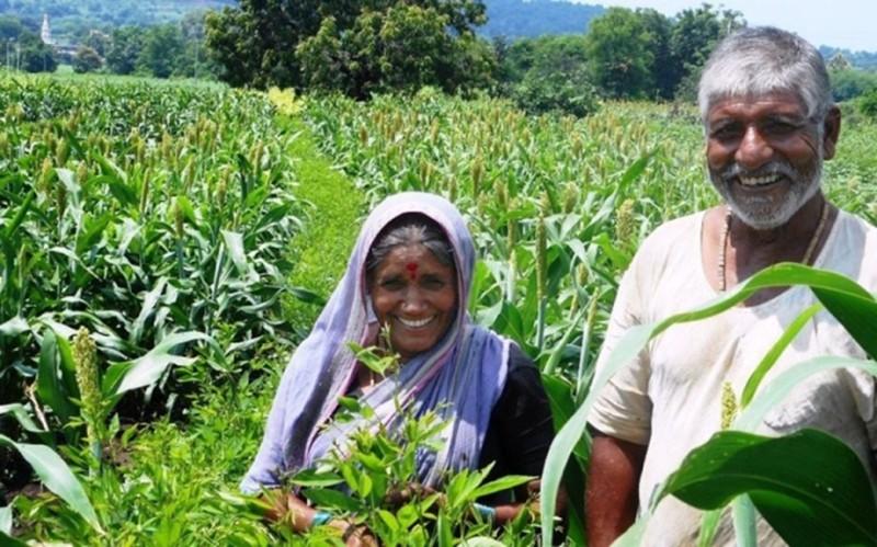 Bihar Agricultural Equipment Subsidy