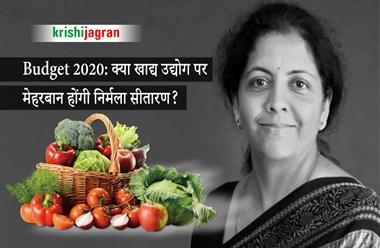 Budget 2020: आजादी के बाद से उपेक्षित ही रहा खाद्य उद्योग, इस बार क्या मिलेगा खास?