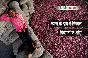प्याज की गिरती कीमत ने अब किसानों को रुलाया, सरकार से  की निर्यात पाबंदी हटाने की मांग