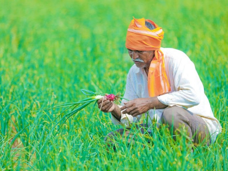 gift to farmers