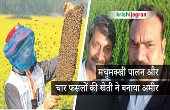 सिर्फ 300 बॉक्स में मधुमक्खी पालन करके किसानों ने कमाए लाखों, साथ ही की चार फसलों की अंतरवर्ती खेती