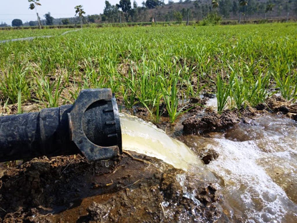 Modern farming How to do farming