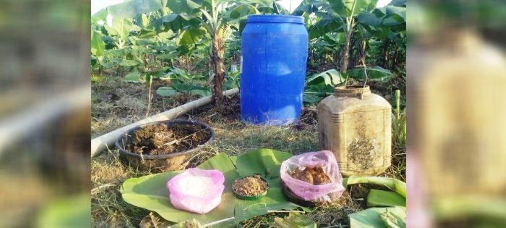 Vermi Compost Method