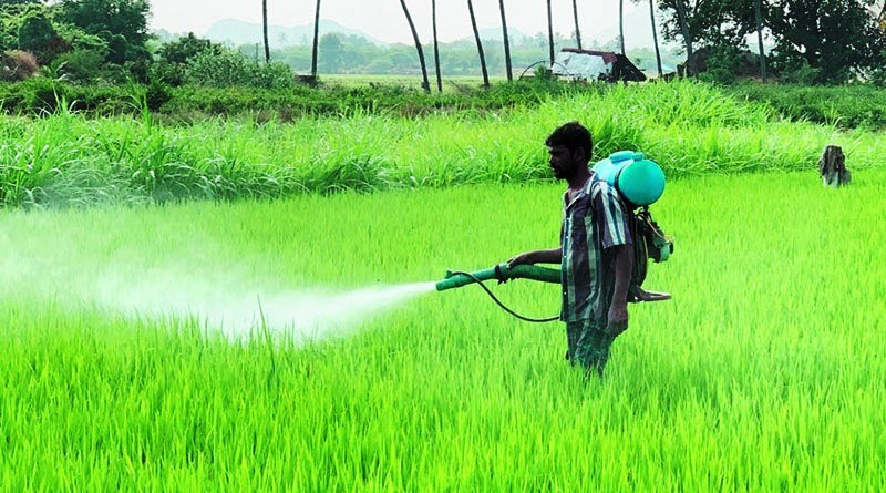 Chemical free agricultural production boosted
