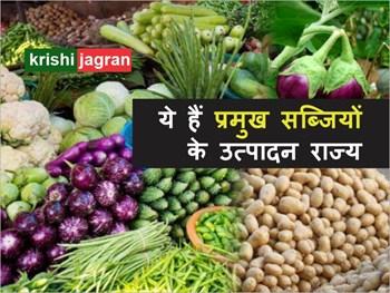 Vegetable production: इन राज्यों में सबसे ज्यादा उगाई जाती हैं ये सब्जियां, देखिए सूची