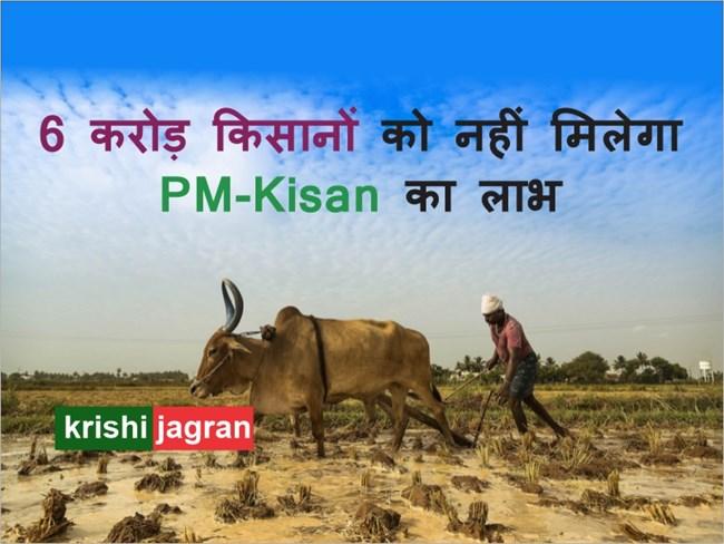 6 करोड़ किसानों को अप्रैल में नहीं मिलेगा PM-Kisan Yojana का लाभ