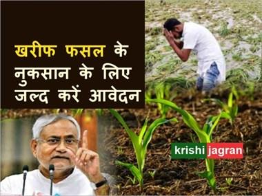 Agricultural input subsidy scheme: किसान को खरीफ फसल नुकसान का अनुदान नहीं मिला, तो 31 मार्च तक करें आवेदन