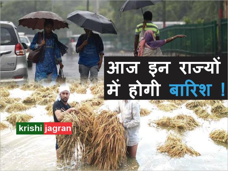 पंजाब, हरियाणा और उत्तराखंड में मध्यम बारिश होने की संभावना !