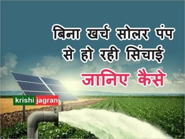 Solar Pump Irrigation: सूखे खेत में किसानों ने सोलर पंप से लाई क्रांति, बिना खर्च कर रहें खेती