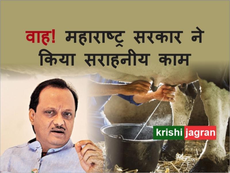 Good News! दूध उत्पादक न हों निराश, अब रोज़ाना 10 लीटर दूध खरीदेगी सरकार