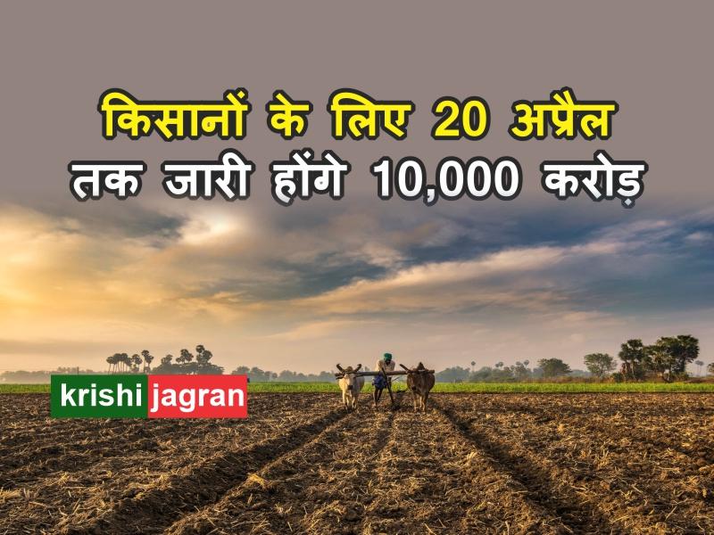 Fasal bima yojana: किसानों के लिए 20 अप्रैल तक जारी होंगे 10,000 करोड़
