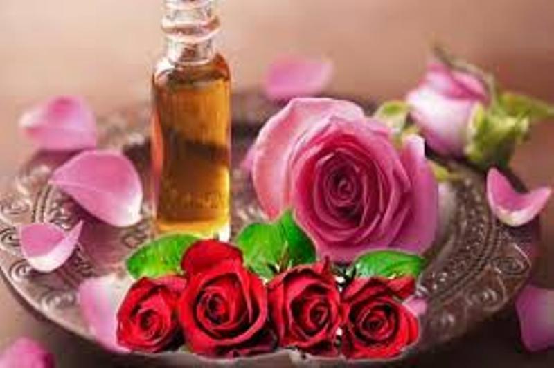 Rose Water Benefits: गुलाब जल से चेहरा बनेगा चमकदार, ऐसे करें इस्तेमाल