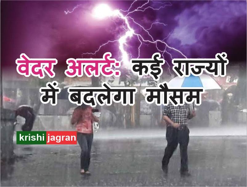 Weather Forecast: मैदानी इलाकों में बढ़ेगा तापमान, पहाड़ी इलाकों में गर्जना के साथ होगी हल्की बारिश !