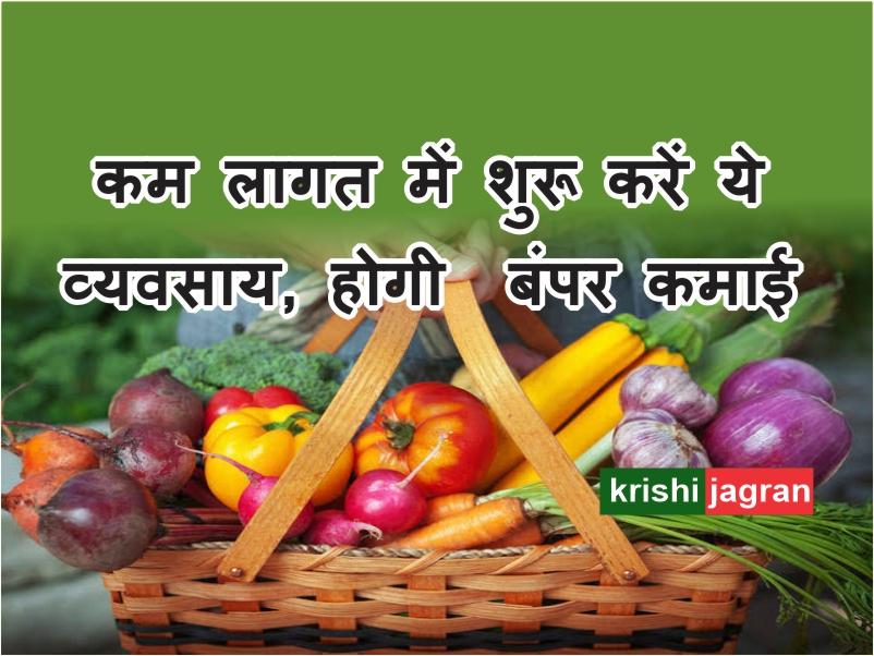 ऐसे शुरू करें घर बैठे ऑनलाइन सब्जी और फल बेचने का बिजनेस, होगी बंपर कमाई