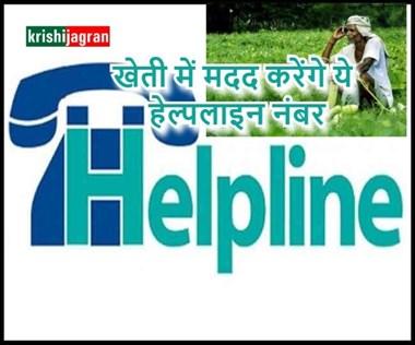 Farmers Helpline Number: किसानों के लिए जारी हुए हेल्पलाइन नंबर, खेती संबंधी समस्या का मिलेगा हल