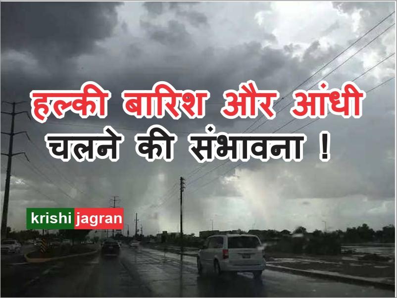 अगले 24 घंटों में इन इलाकों में हल्की बारिश और आंधी चलने की संभावना !
