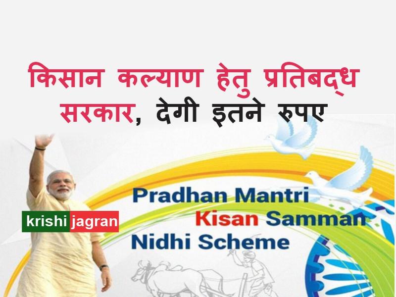 PM-Kisan : 4.91 करोड़ किसानों के लिए सरकार का हितैषी कदम, मिलेंगे इतने रुपए