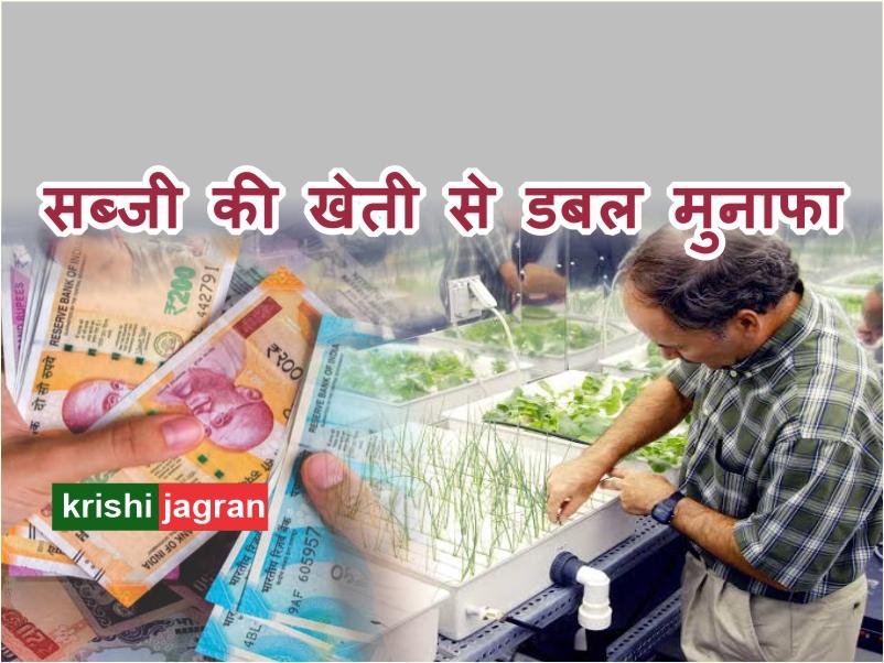 1 लाख रूपए के निवेश पर 2 लाख रुपए तक का मुनाफा पाने के लिए करें इस तकनीक से खेती