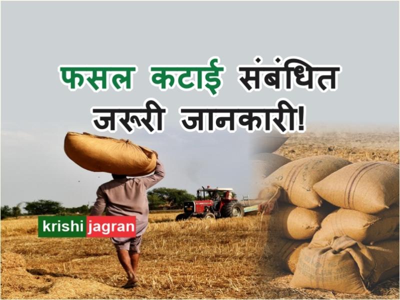 गेहूं किसानों के लिए खाद्यान्न पैकेजिंग के नियमों में सरकार ने दी छूट