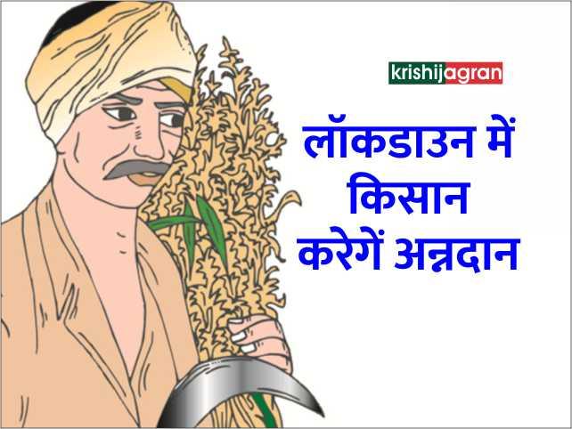 संकट की घड़ी में सरकार ने किसानों से की अन्नदान करने की अपील