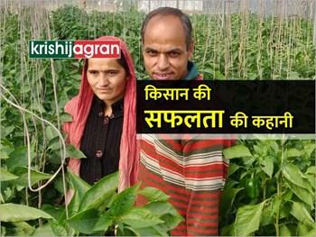 सफल किसान : विदेश छोड़ खेती को बनाया आजीविका का साधन, हो रहा लाखों में कमाई