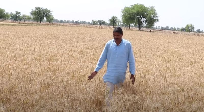 Farmers Haryana