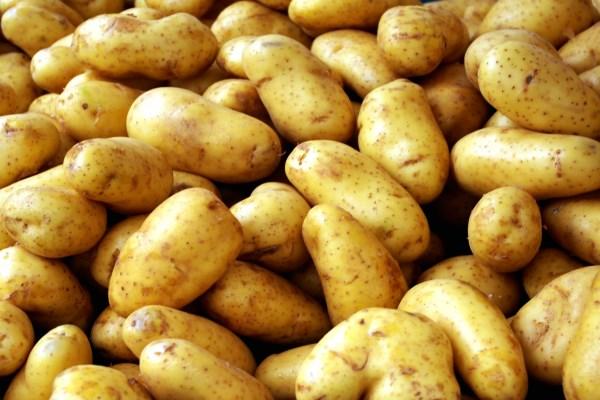 बटाटा