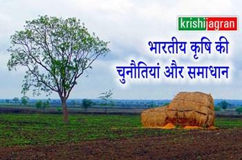 लघु और सीमान्त किसानों की कम होती जोत वाली जमीन और समस्याएं