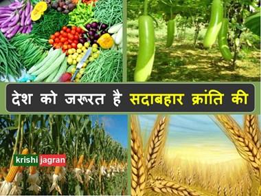 देश को जरूरत है सदाबहार क्रांति की