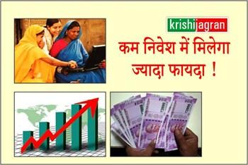 Low Investment Business ideas: कम निवेश में ज्यादा फायदा पाने के लिए इस बिजनेस  को शुरू करें, सरकार देगी लोन !