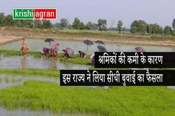 मजदूरों के पलायन का असर : इस राज्य के किसान करेंगे धान की सीधी बुवाई