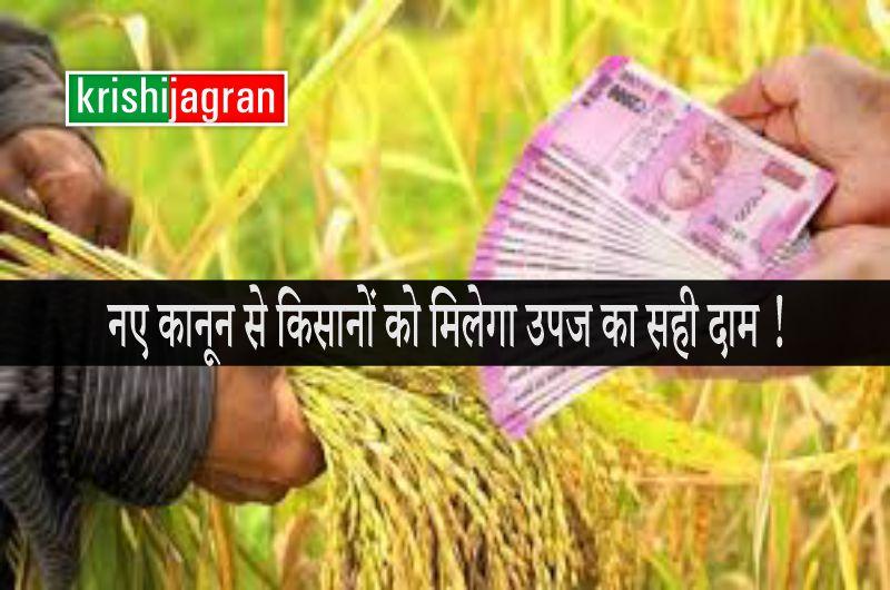 कृषि व्यापार पर नए कानून से किसानों को मिलेगा उपज का सही दाम