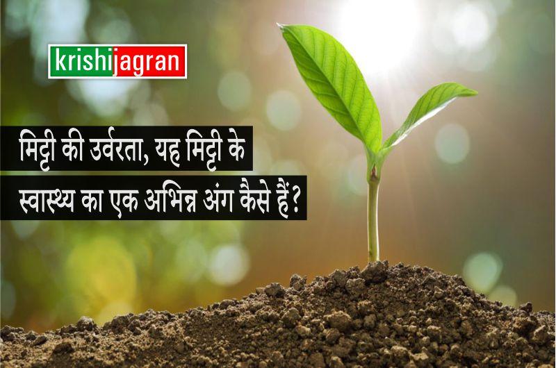 मिट्टी की उर्वरता, यह मिट्टी के स्वास्थ्य का एक अभिन्न अंग कैसे हैं?