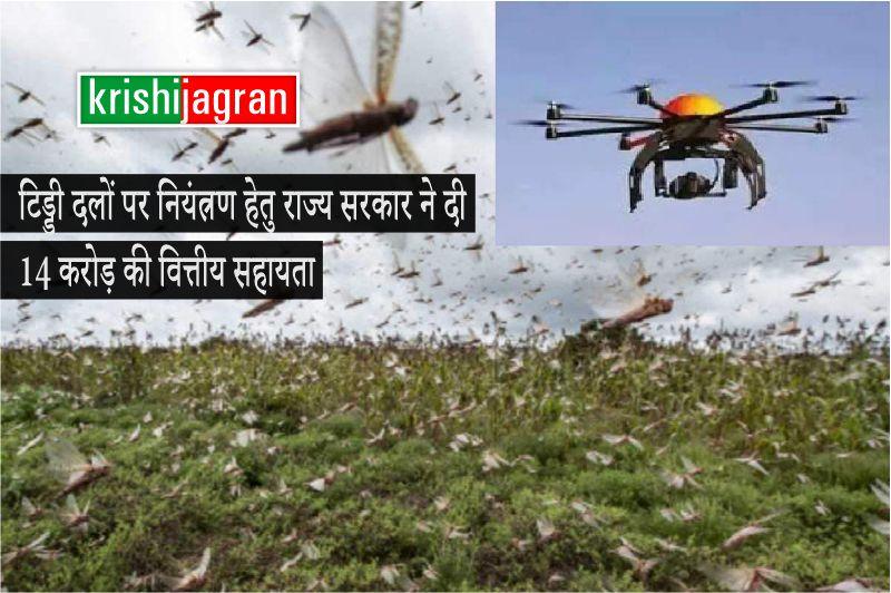 टिड्डी दलों पर नियंत्रण हेतु कीटनाशकों का छिड़काव ड्रोन और हेलिकॉप्टर से होगा
