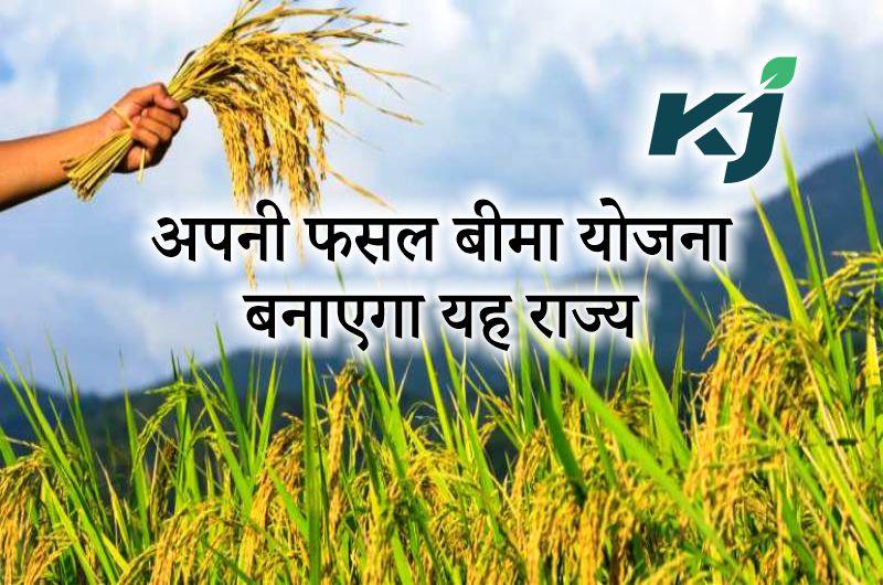 इस राज्य में किसानों को लाभ देने के लिए सरकार अपनी फसल बीमा कंपनी बनाएगी